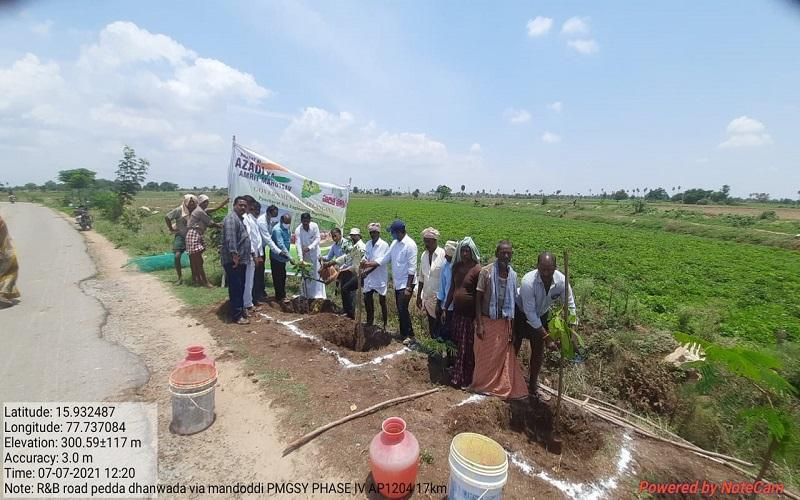 Plantation drive on 750 PMGSY roads in South zone, 5th July- 11th July, 2021