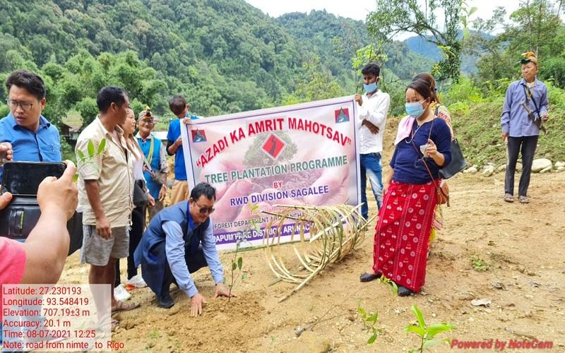 Plantation drive on 750 PMGSY roads in East zone, 12th July - 18th July, 2021