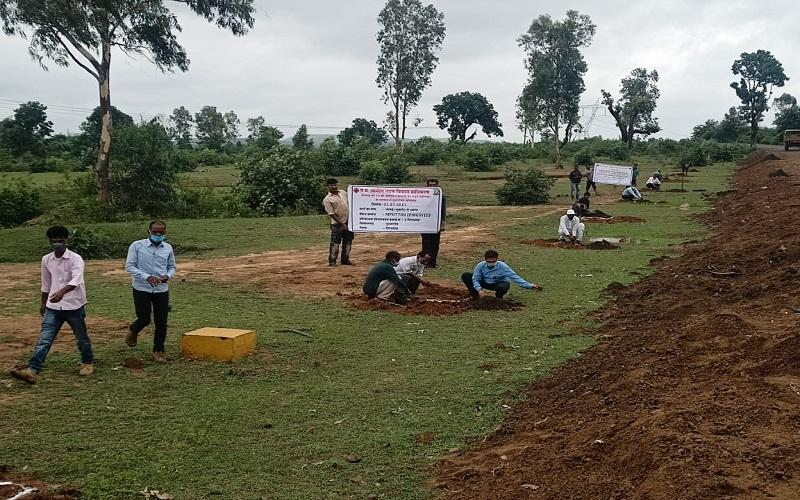 Plantation drive on 750 PMGSY roads in West zone, 19th July- 25th July, 2021